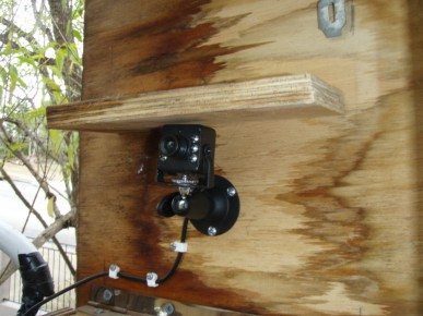 nestbox camera - click to enlarge. Nest Box Camera